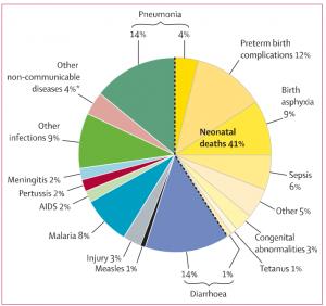 الشكل 2. من بين الأمراض التي يُزعم أن التطعيم يمنعها ، فإن التهاب السحايا والحصبة والسعال الديكي والتيتانوس تشكل جميعها 6٪ فقط من معدلات وفيات الأطفال دون الخامسة